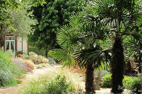 ADH paysage : entretien du jardin