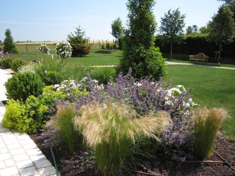 massif avec plantes vivaces et arbustives