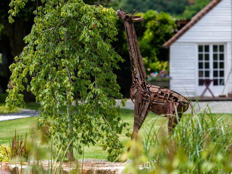 sculpture girage mangeant un hêtre pleureur