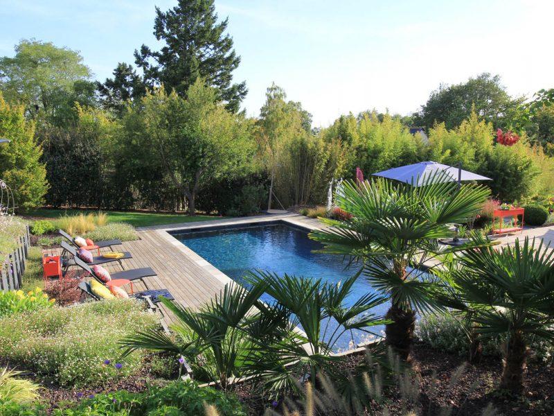 piscine paysagée avec palmiers en permier plan