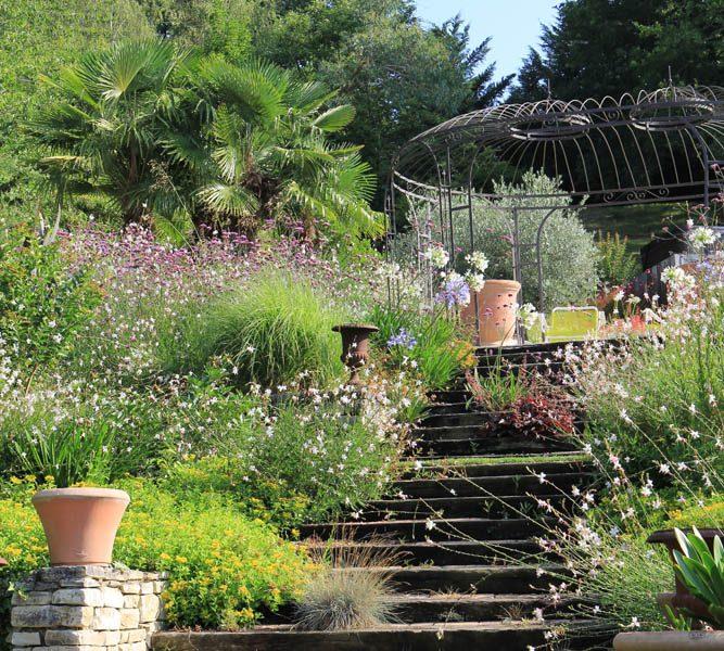 Escalier paysagé avec plantes vivaces et arbustives