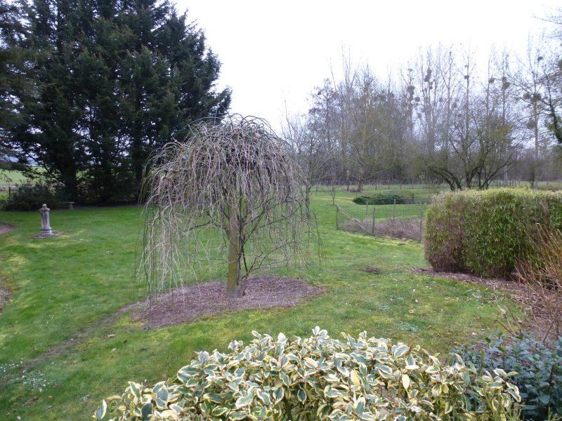04-ADH-PAYSAGES-nos-projets-jardin-sal-avant