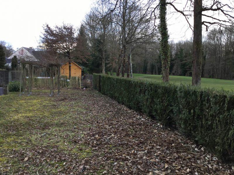1-ADH-PAYSAGES-nos-projets-jardin-paris-avant