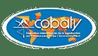 Cobaty 41